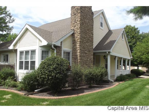 22 Chimney View Ln, Sherman, IL 62707 (MLS #185833) :: Killebrew & Co Real Estate Team