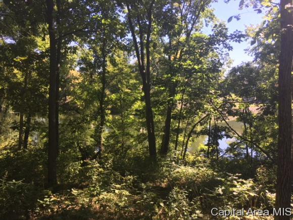 176 Beyers Lake, Pana, IL 62557 (MLS #186153) :: Killebrew & Co Real Estate Team