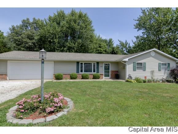 546 Circle Drive, Pleasant Plains, IL 62677 (MLS #191385) :: Killebrew - Real Estate Group