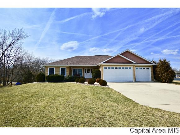 9685 Old Indian Trail, Chatham, IL 62629 (MLS #191590) :: Killebrew - Real Estate Group