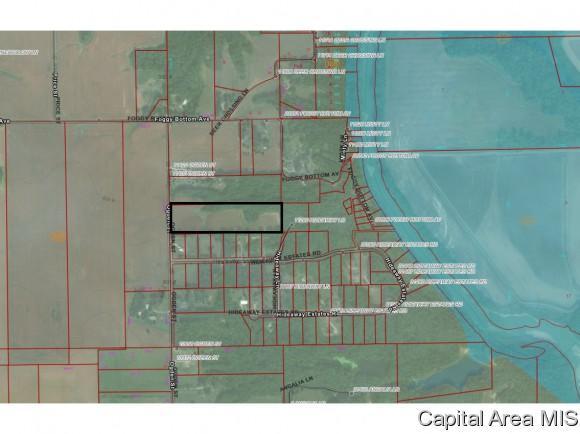 Ogden Rd, Petersburg, IL 62675 (MLS #191816) :: Killebrew - Real Estate Group