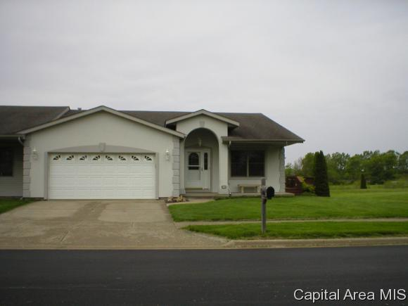 1105 N Park Ave, Chatham, IL 62629 (MLS #193022) :: Killebrew - Real Estate Group