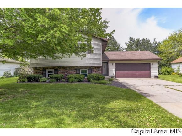 31 Hawthorn Ln, Pleasant Plains, IL 62677 (MLS #193065) :: Killebrew - Real Estate Group