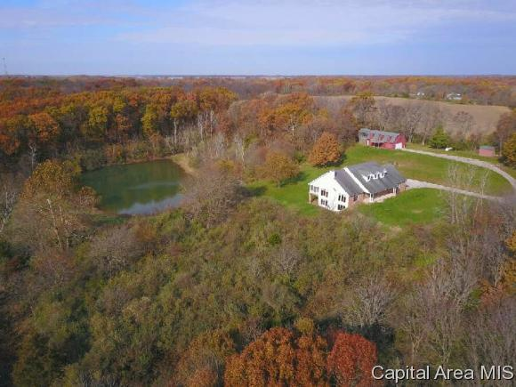 6372 Irwin Bridge Rd, Pleasant Plains, IL 62677 (MLS #178035) :: Killebrew RE