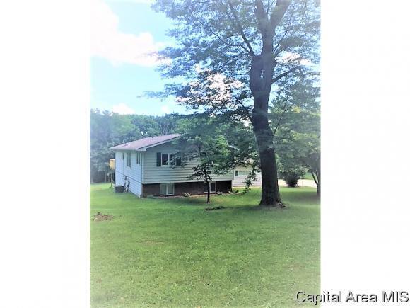 5158 Kinsinger Ln, Pleasant Plains, IL 62677 (MLS #183445) :: Killebrew & Co Real Estate Team
