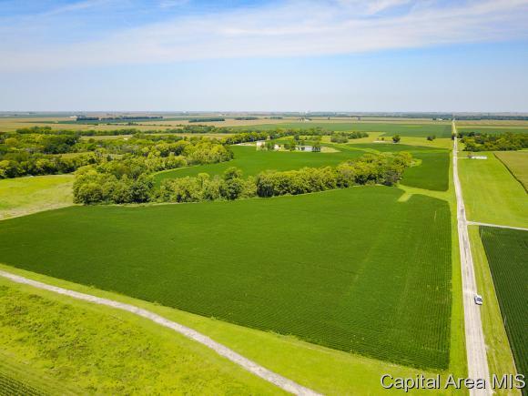 County Road 225E, Bethany, IL 62914 (MLS #184294) :: Killebrew & Co Real Estate Team