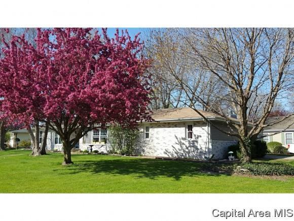 301 Casson St, Williamsville, IL 62693 (MLS #186621) :: Killebrew & Co Real Estate Team