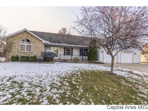 224 Oakwood Ln, Williamsville, IL 62693 (MLS #187510) :: Killebrew RE