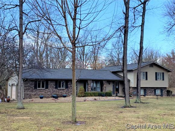 6015 Long Creek Dr, Rochester, IL 62563 (MLS #191537) :: Killebrew - Real Estate Group
