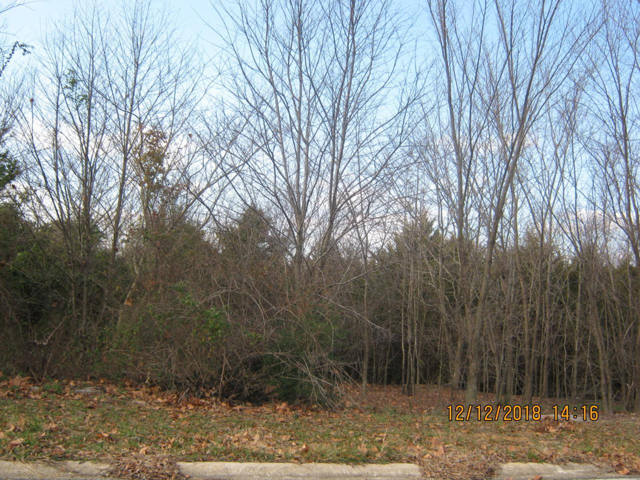 Tbd Lot 24 Oak Ridge Drive - Photo 1