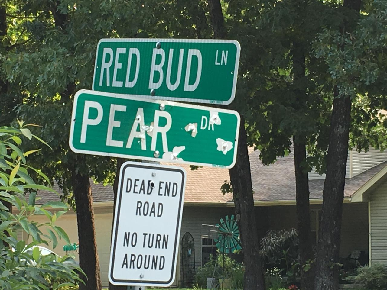 Tbd Red Bud Lane - Photo 1