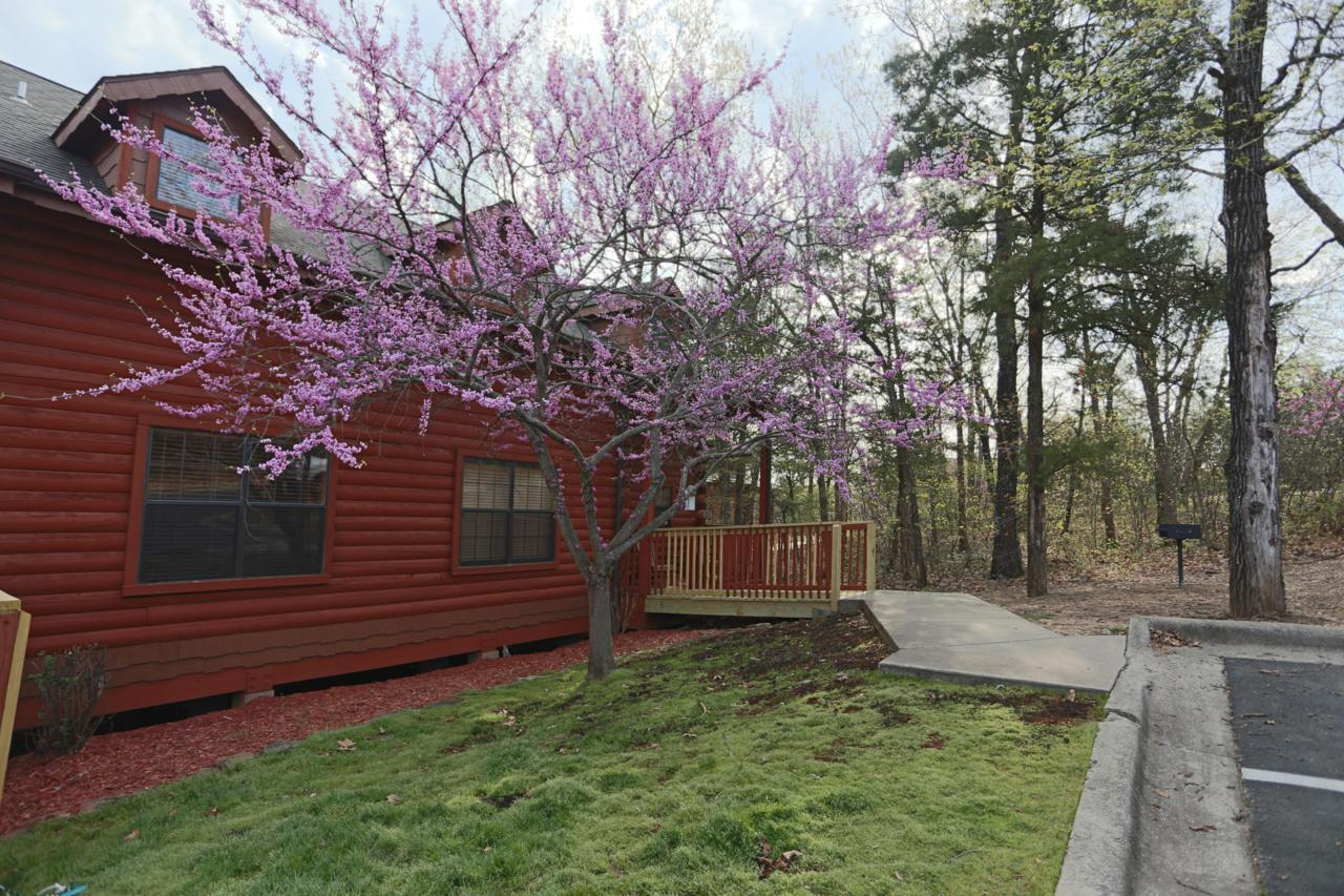 246 Oak Ridge Road - Photo 1