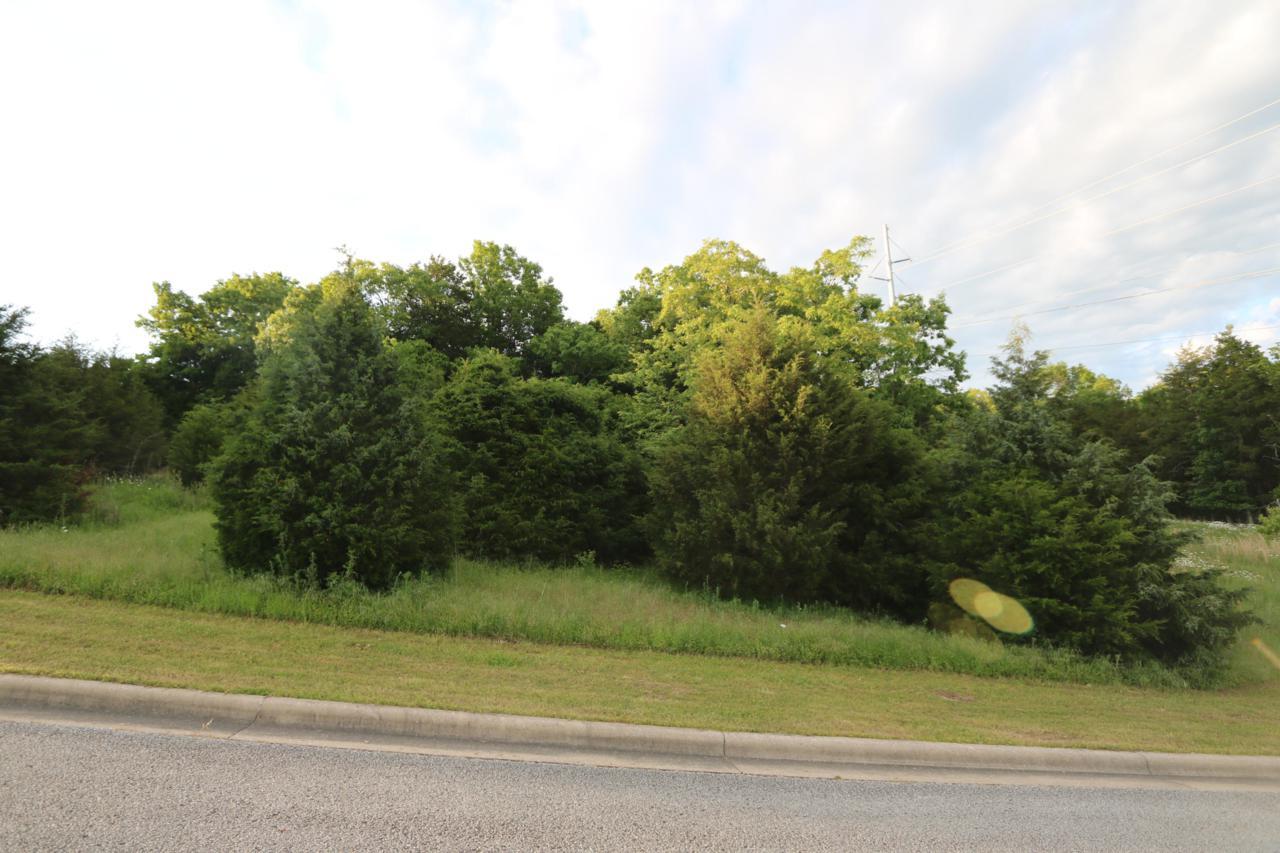 Tbd Deer Valley Road - Photo 1