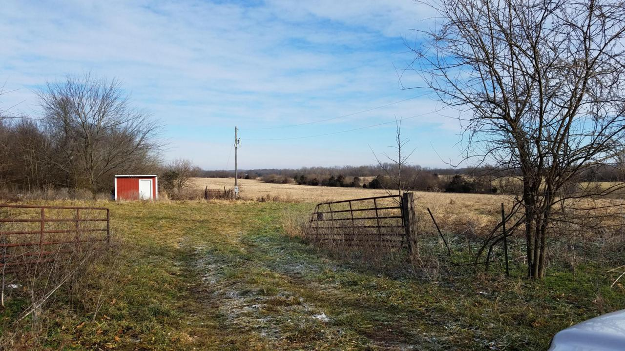 Tract 2-B Drier Road - Photo 1