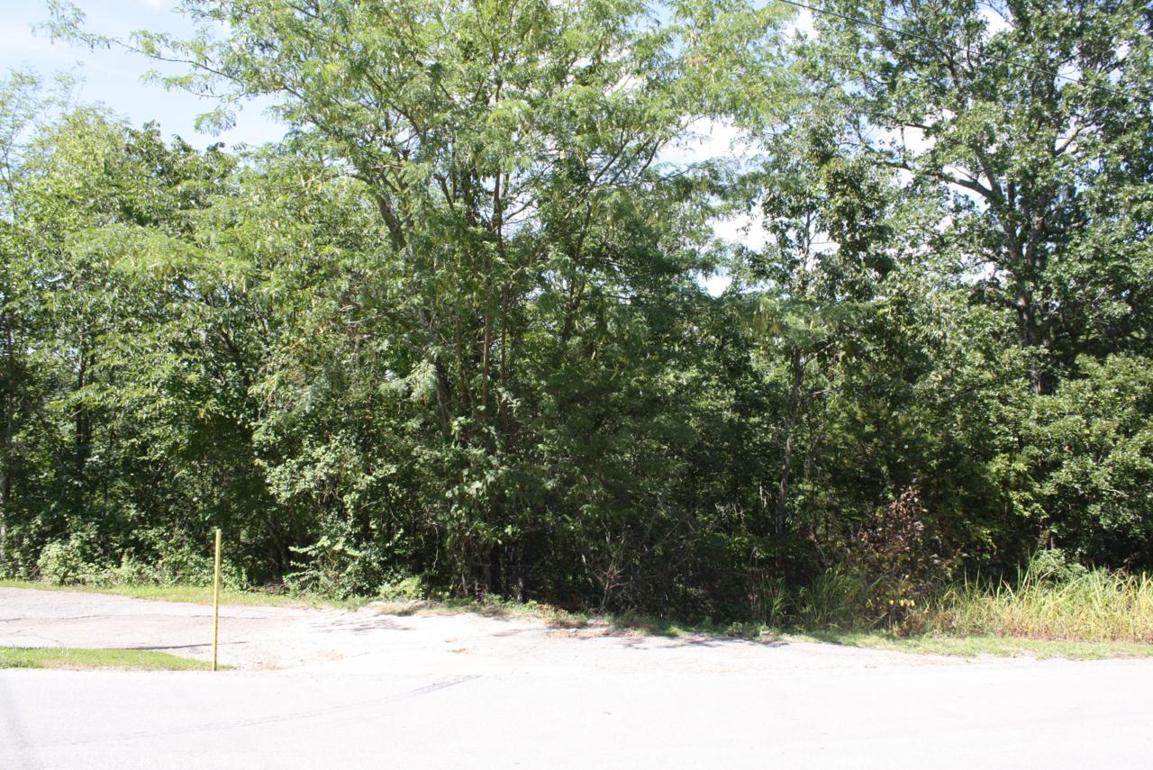 Tbd Shore Point Drive - Photo 1