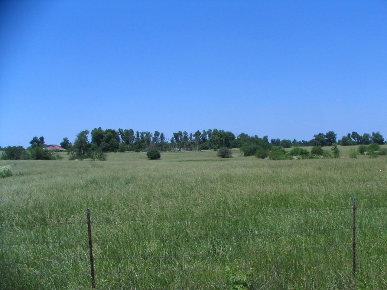 5929 Farm Rd 124 - Photo 1
