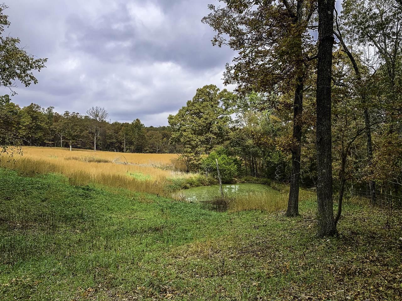 Tbd County Road 530 - Photo 1