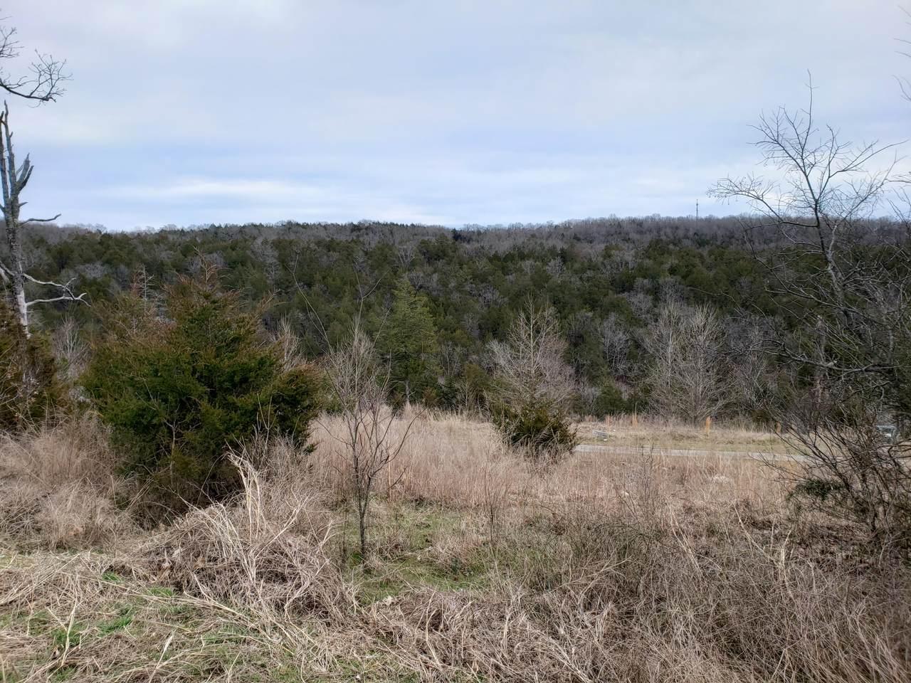 000-Lot 200r Country Ridge Way - Photo 1