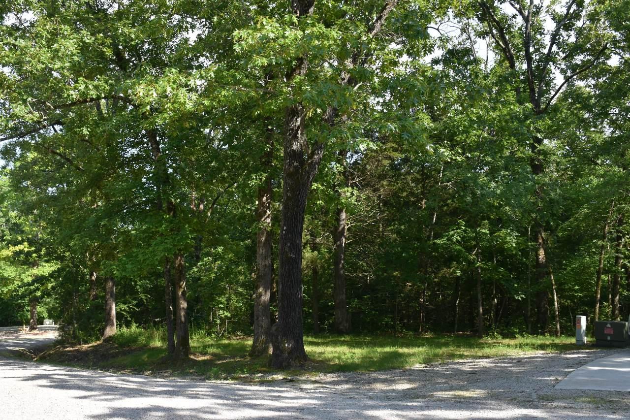 Lot 10 Oak Tree Point - Photo 1