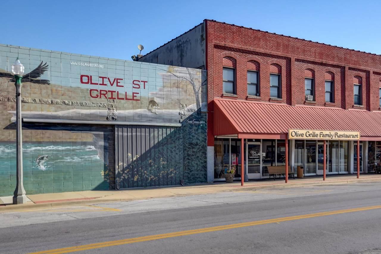 15 Olive Street - Photo 1