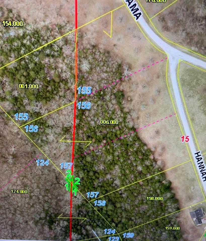 Lot 156 Hannah Circle - Photo 1
