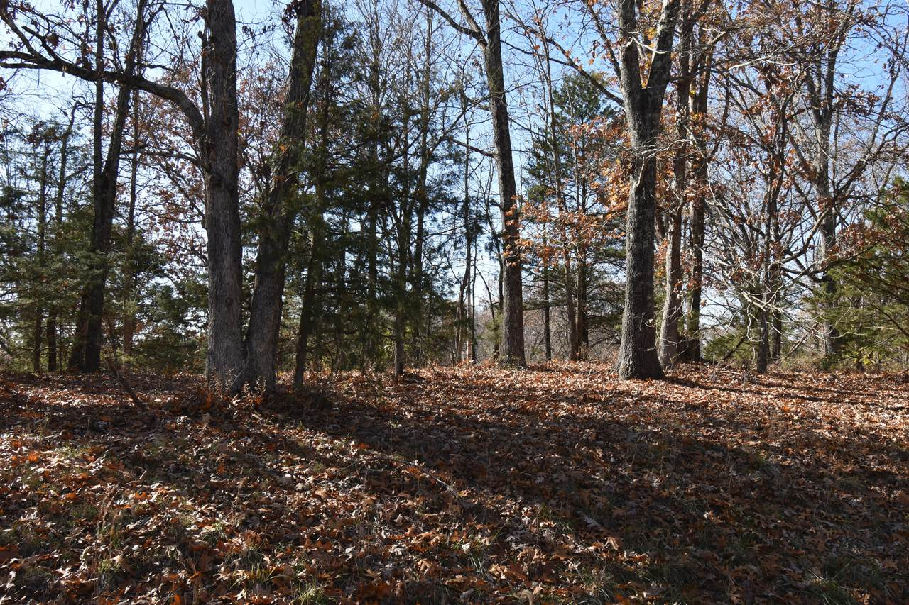 Lot 69 Lost In Woods Lane - Photo 1