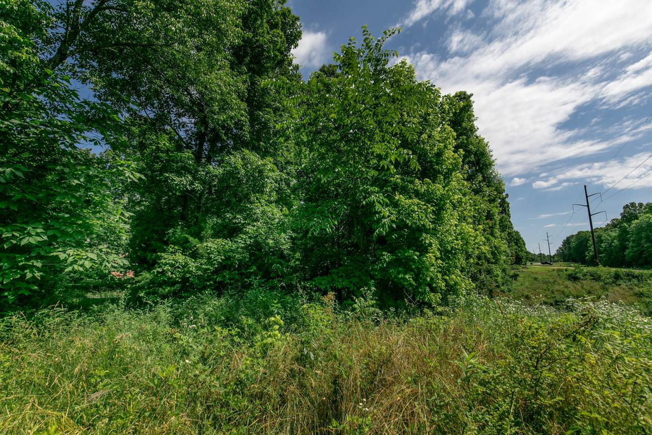 Lot 31 Pebble Creek - Photo 1