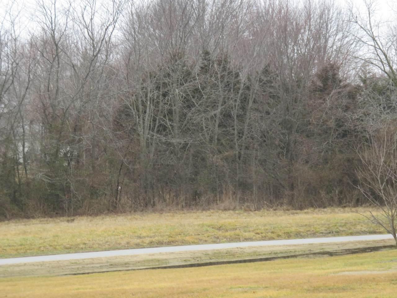 6 Lots Autoscope Drive - Photo 1