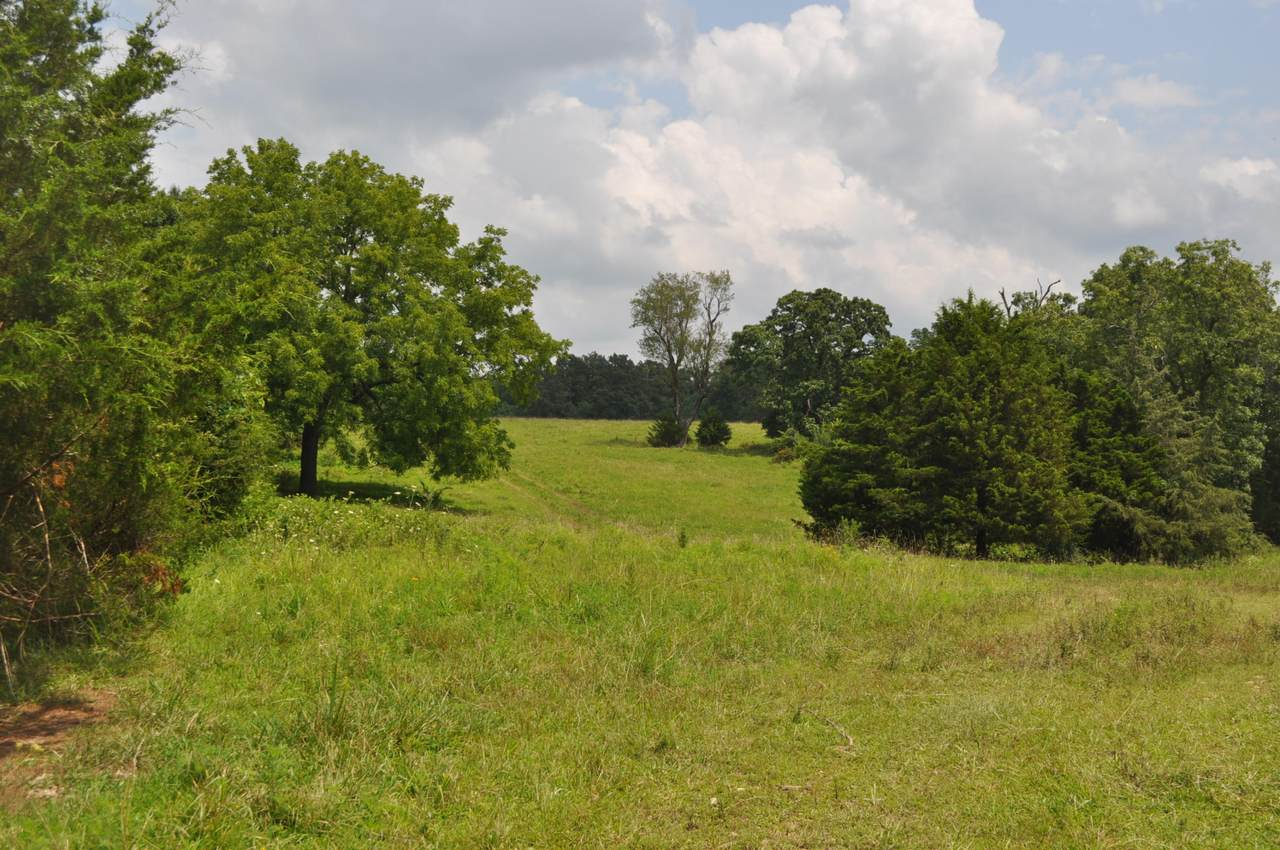 000 Farm Road 2 - Photo 1