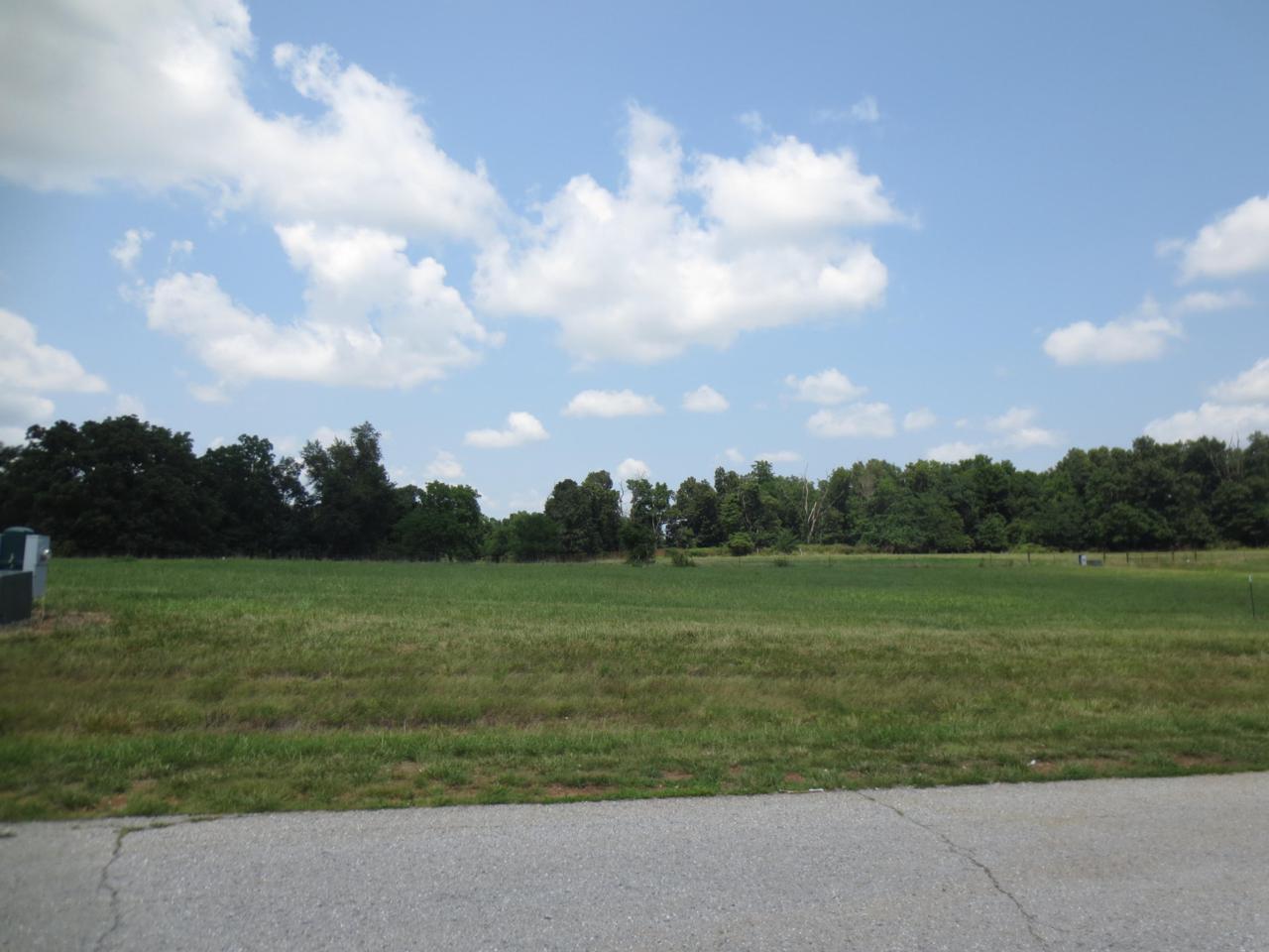 Lot 63 Robins Nest Hill - Photo 1