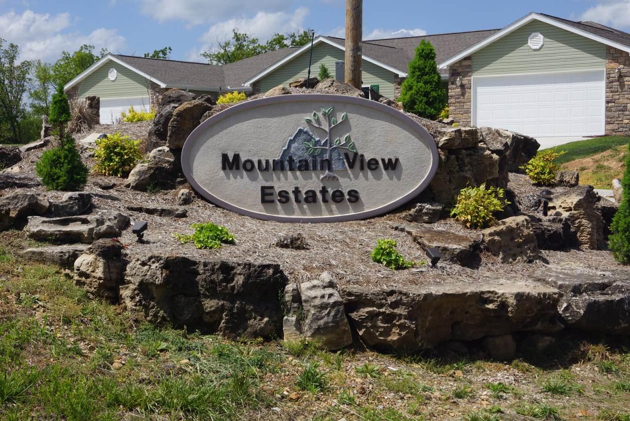 Tbd Mountain View Parkway - Photo 1