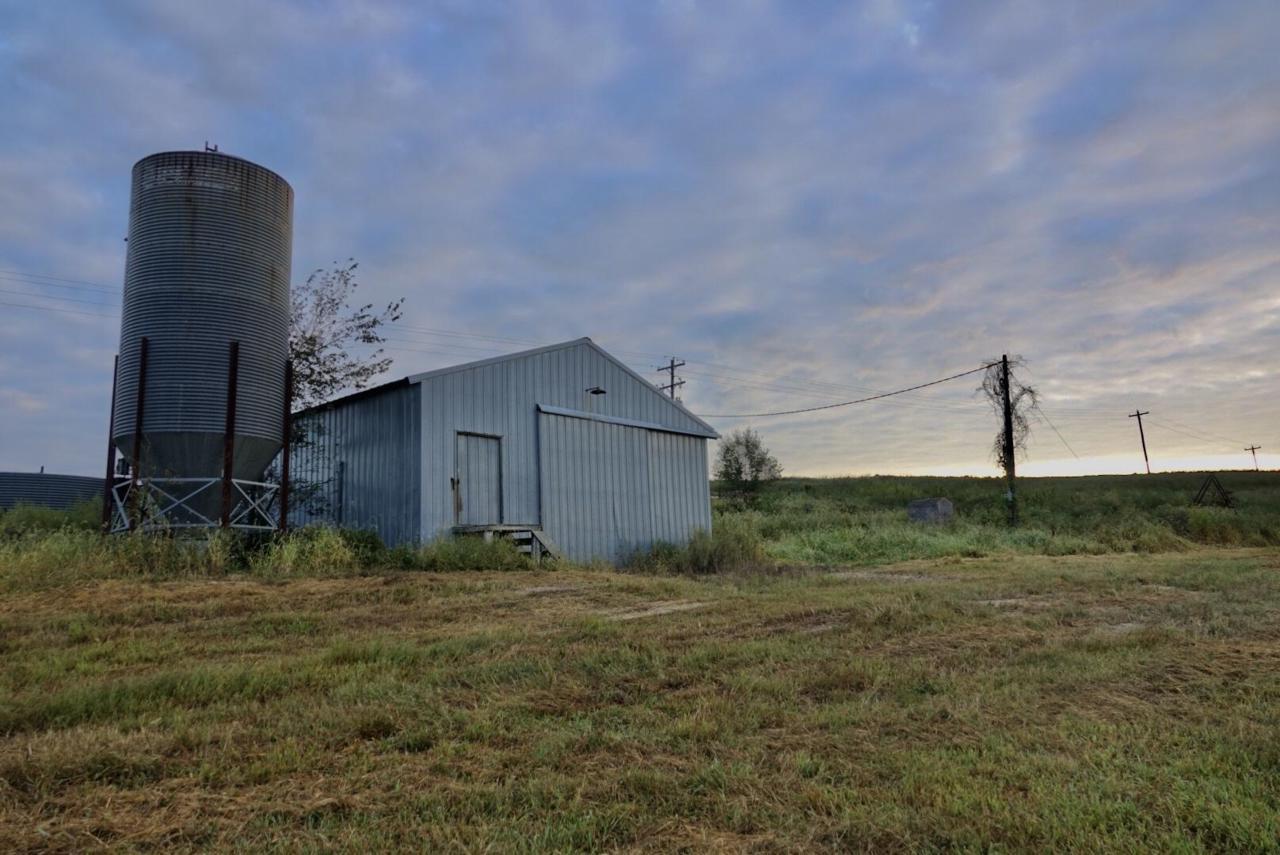 1436 County Road 137 - Photo 1
