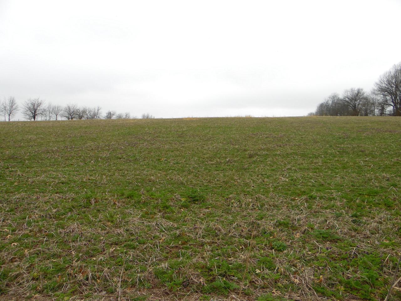 Tbd-Tr12 Farm Rd. 115 - Photo 1