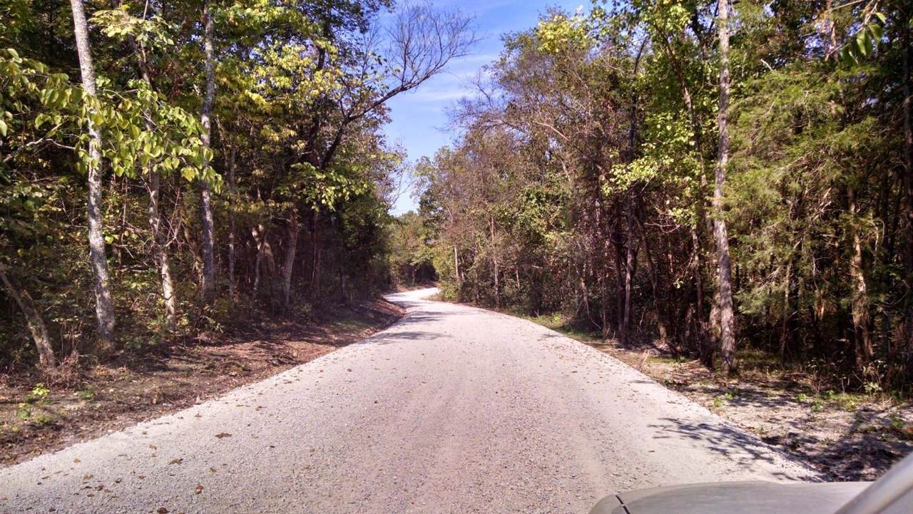 12 Acres Greatview Road - Photo 1