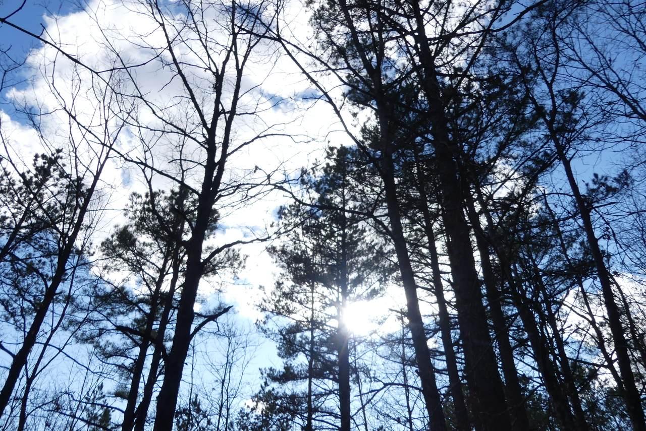 Tbd Lakeview Trail - Photo 1