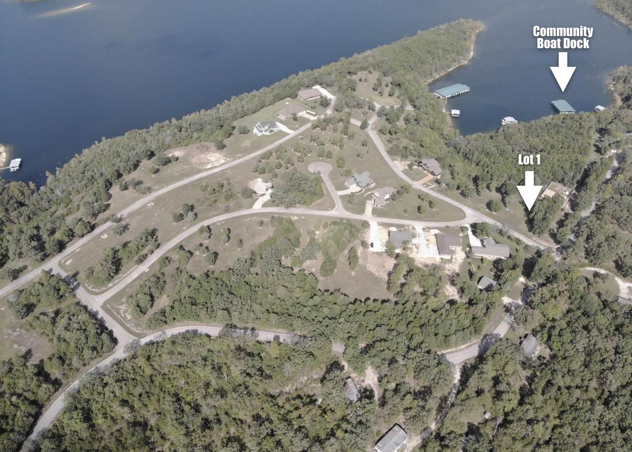 Lot 1 Bread Tray Mountain Estates - Photo 1
