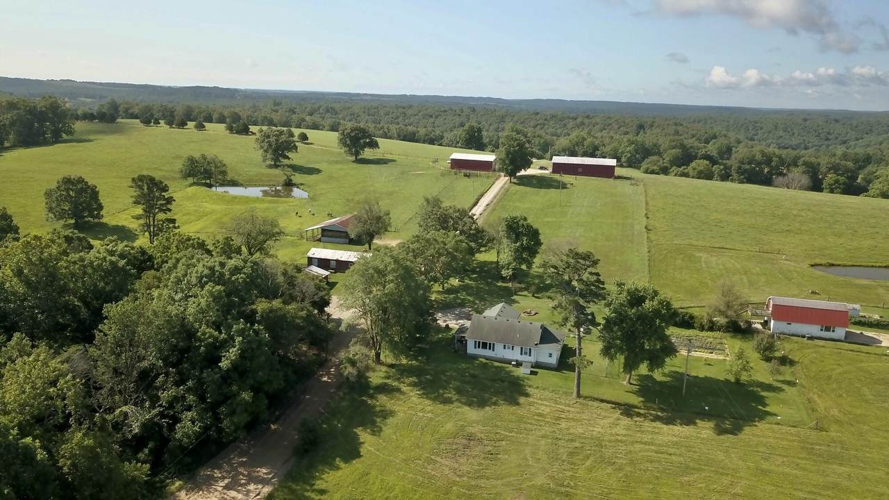242 County Road 338 - Photo 1