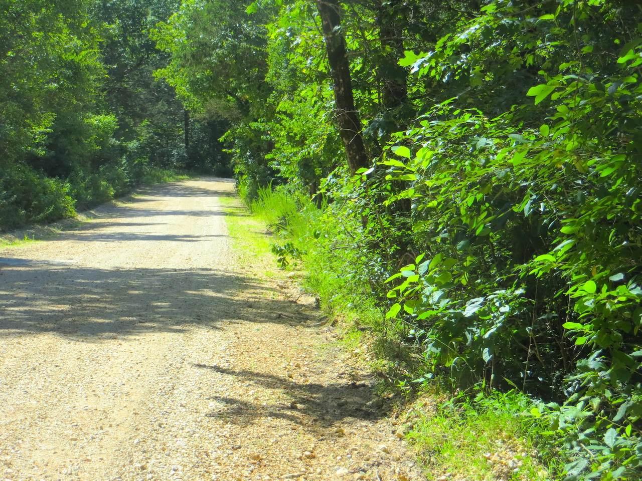 000 Kerley Point Road - Photo 1