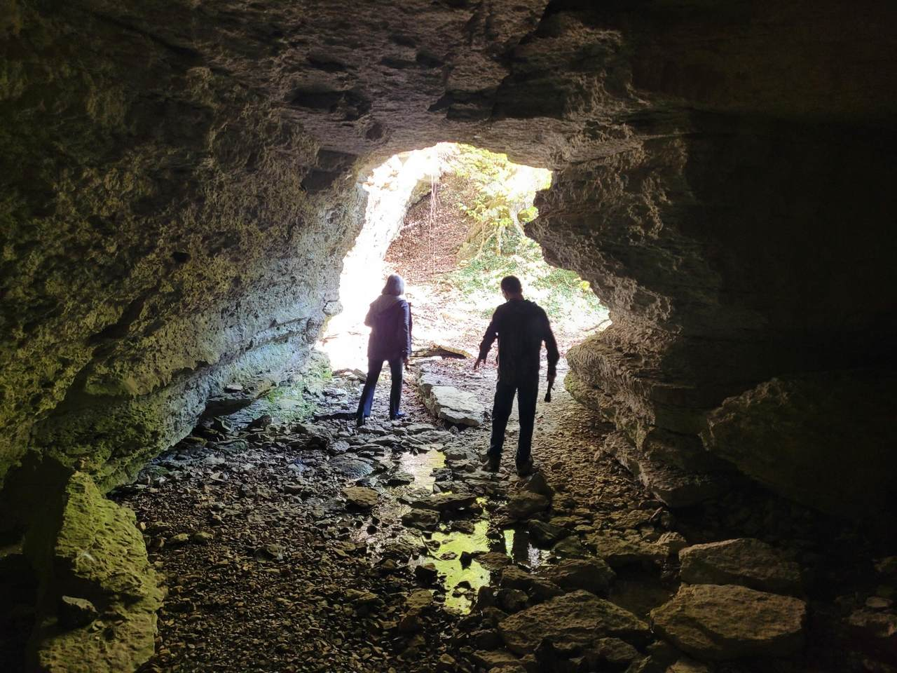 1431 Hicks Cave Road - Photo 1