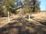 109 Appaloosa Trail - Photo 14
