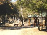 109 Appaloosa Trail - Photo 19