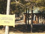109 Appaloosa Trail - Photo 20
