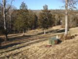 109 Appaloosa Trail - Photo 3