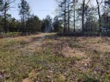 Lot 31 Eagle Bluff Estates - Photo 12