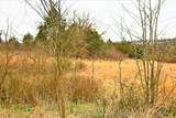 000 Coon Creek Road - Photo 27