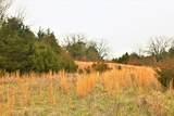 000 Coon Creek Road - Photo 16