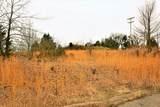 000 Coon Creek Road - Photo 14