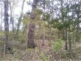 000 Tanglewood - Photo 1