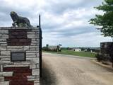 Lot 30-The Peninsula Rockyview Lane - Photo 12