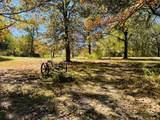 629 Dade County 102 - Photo 12